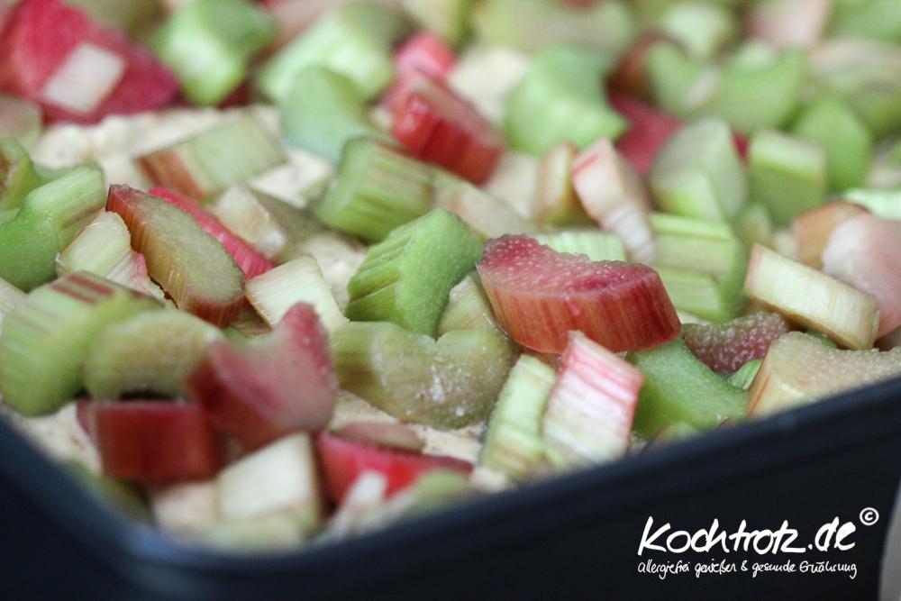 Rhabarberkuchen-mehlfrei-milchrei-fructosearm-1
