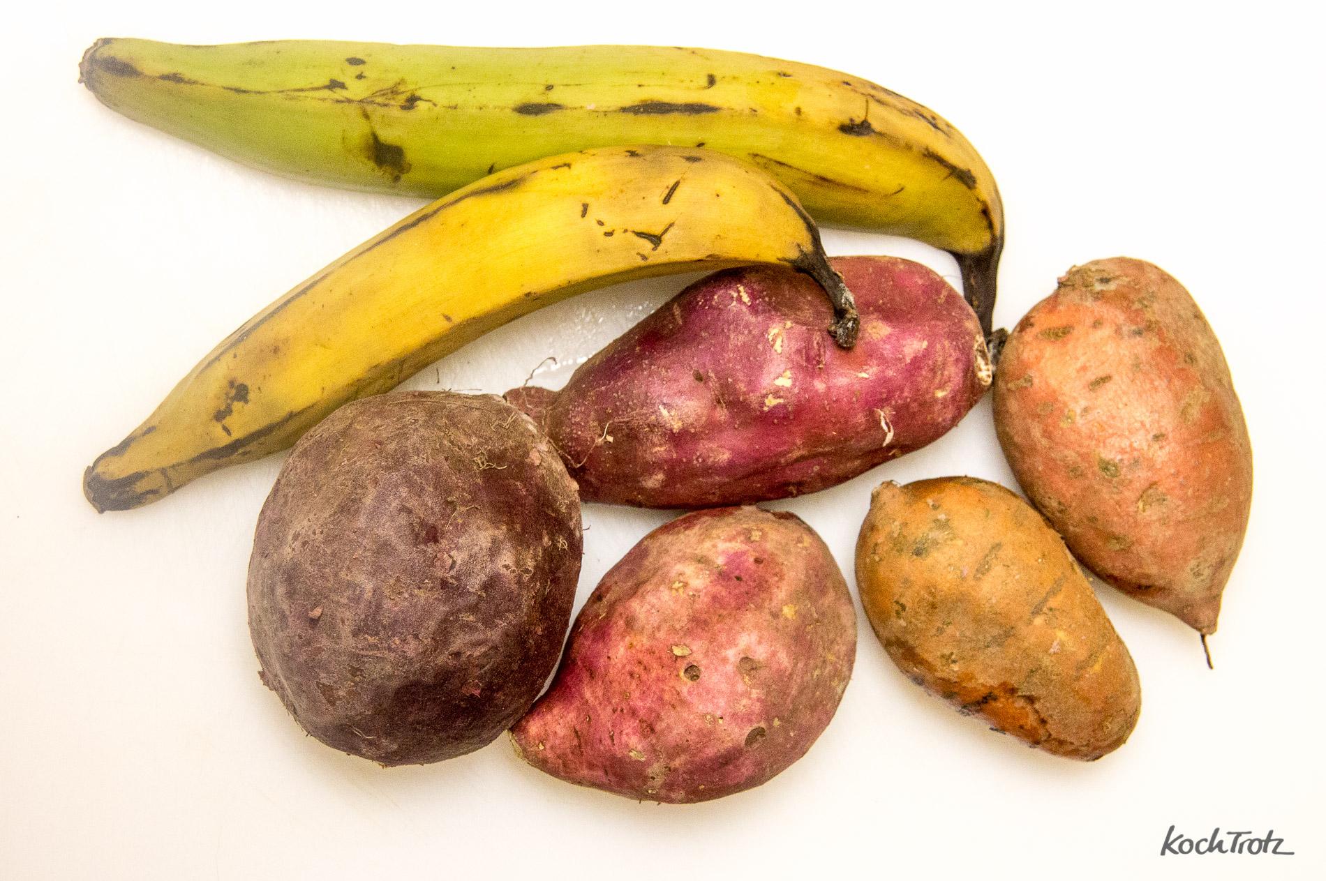 eintopf-mit-pastinaken-suesskartoffeln-kochbanane-karotte-vegan-indisch-1