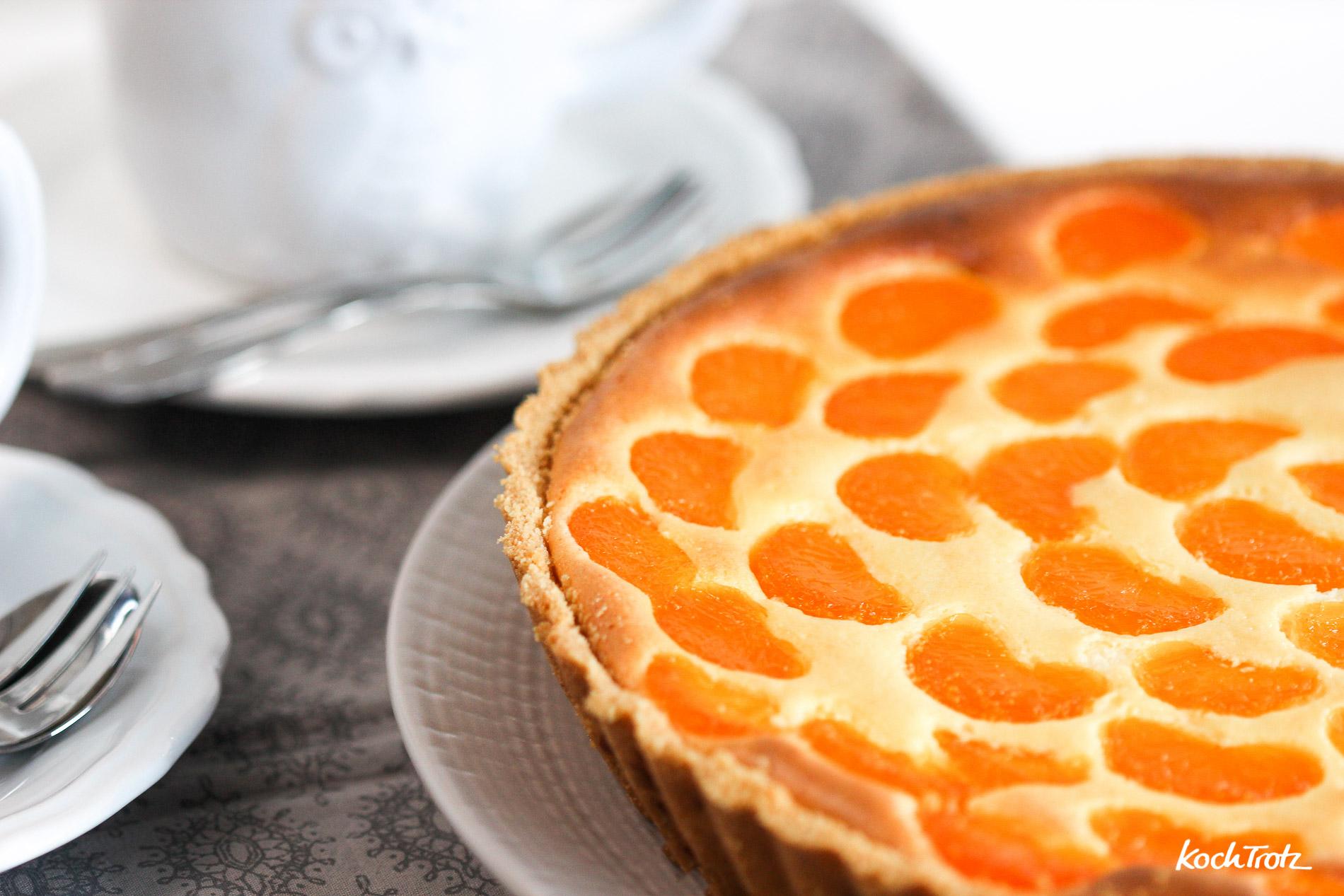 Mandarinen schmand kuchen laktosefrei