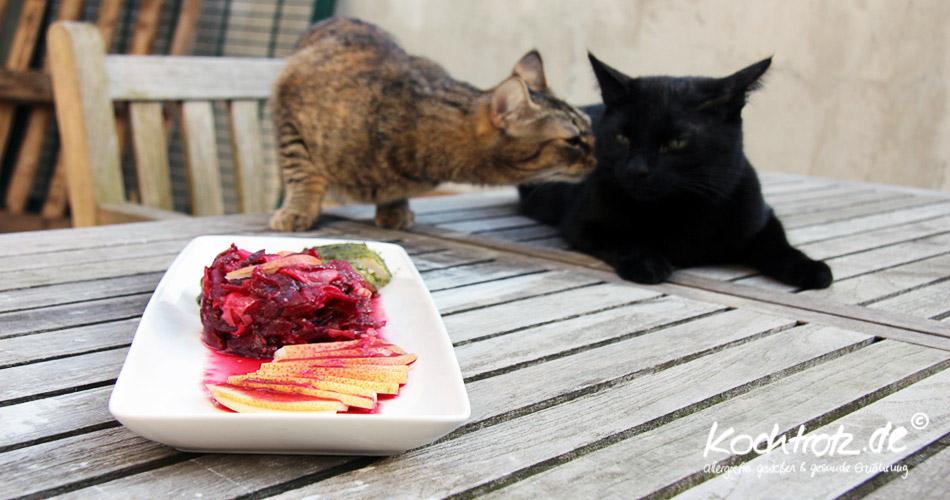 rote Bete-Birnen-Radieschen-Salat mit Katzen