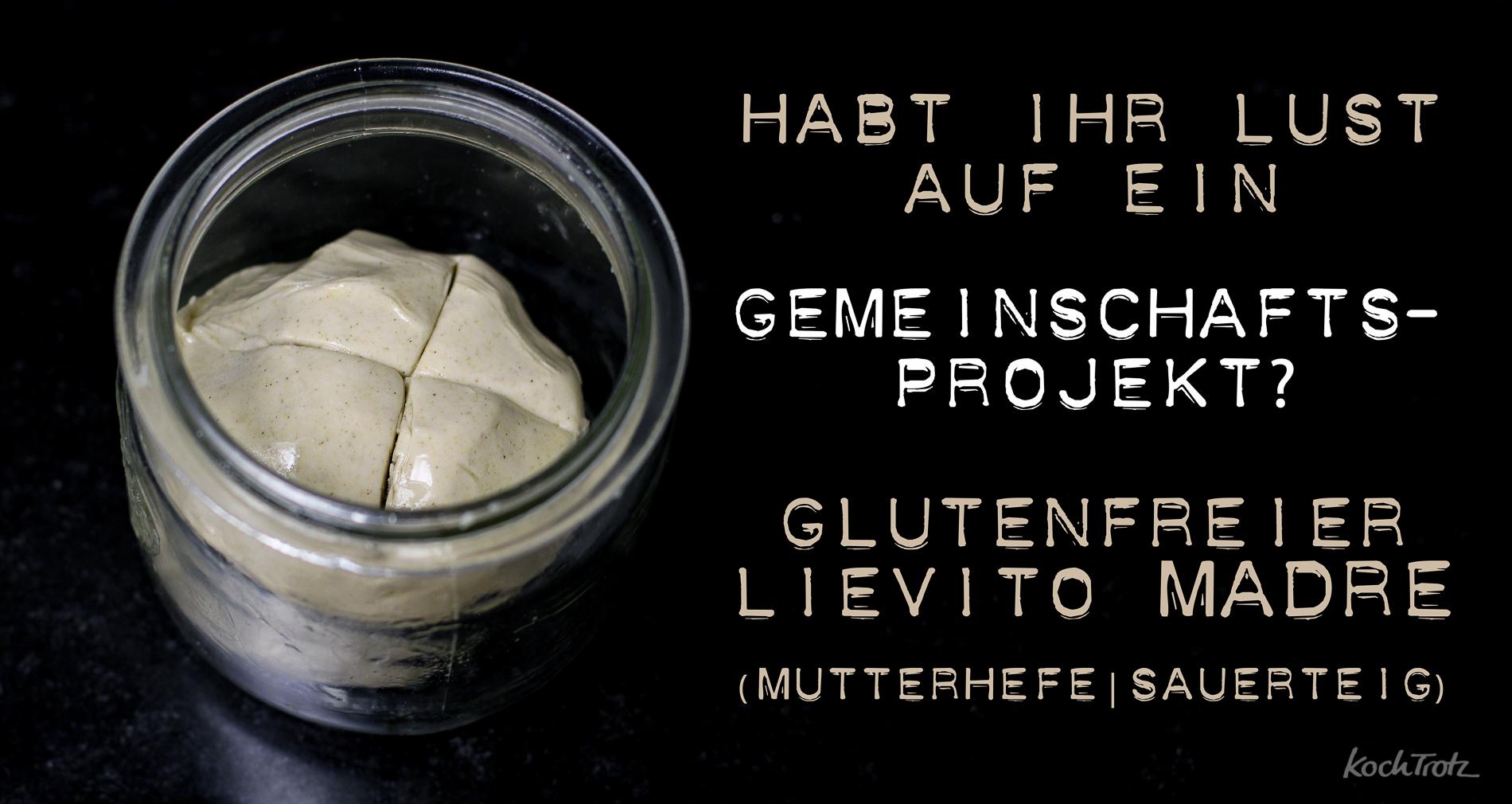 lievito-madre-glutenfrei-gemeinschaftsprojekt-1