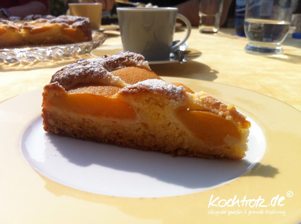 Oberlecker!!! Versunkener Obst-Kuchen - fruktosearm, glutenfrei, laktosefrei, sorbitfrei, histaminarm