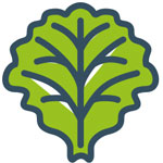 kt-icons-blog-2021-salat